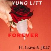 Forever de Littt