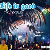 Life Is Good by Meltheplug