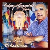 Canta los Países Bolivarianos de Edgar Gurmeitte
