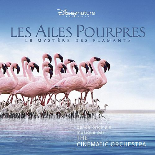 The Crimson Wing: Mystery Of The Flamingos de Cinematic Orchestra