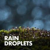 Rain Droplets fra Nature Sounds (1)