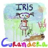 Curandera de Iris