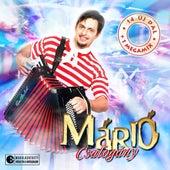 Csalogany de Mario
