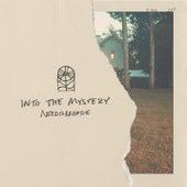 Into The Mystery de Needtobreathe