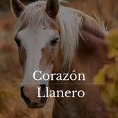Corazón Llanero by German Garcia