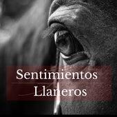 Sentimientos Llaneros by German Garcia