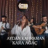 Kara Ağaç by Aydan Kahraman