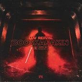 Boosk'Anakin de Luv Resval