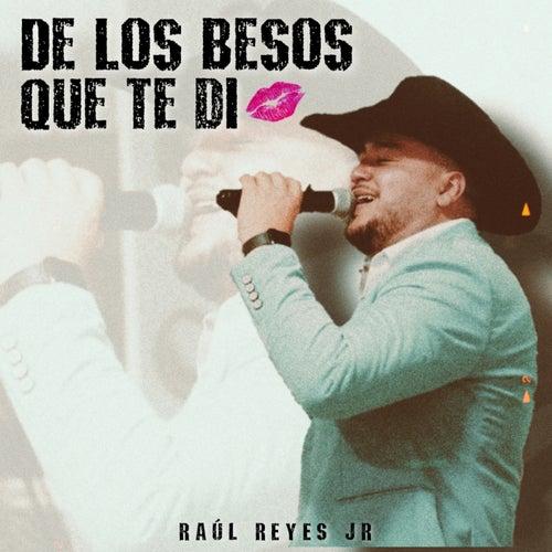 De los Besos Que Te Di (Cover) de Raul Reyes Jr