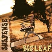 Suspense de BigLeaf