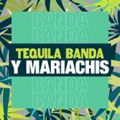 Tequila, Banda y Mariachis de Various Artists