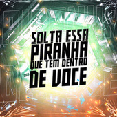 Solta Essa Piranha Que Tem Dentro de Você (feat. MC Renatinho Falcão & Deusas do funk) de DJ Hn Beat