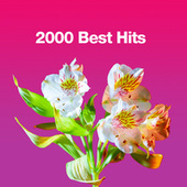 2000 Best Hits fra Various Artists