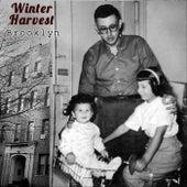 Brooklyn de Winter Harvest