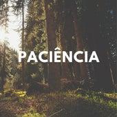 Paciência (Cover) by Fernando Mori