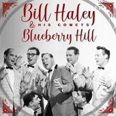 Blueberry Hill by Bill Haley & the Comets