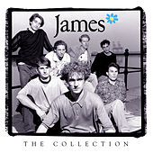 The Collection by James
