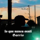 Lo que nunca sentí by El Barrio
