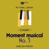 Schubert: Moment musical No. 3 by Aurélien Pontier