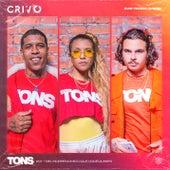 Tons #1 - Meu Sobrenome (O Que Você Quiser) [feat. CRIVO] by Aversa
