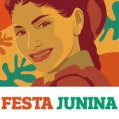 Festa Junina de Various Artists