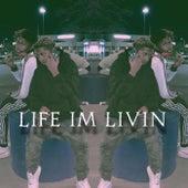 Life Im Livin de Lul Trouble