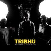 Sesiones Electroacústicas de Tribhu