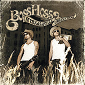 Internashville Urban Hymns de The Bosshoss