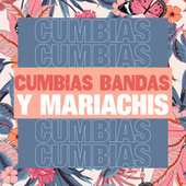 Cumbias, Bandas y Mariachis by Various Artists