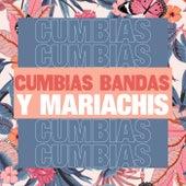 Cumbias, Bandas y Mariachis de Various Artists