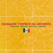 Corazon y Mente en Armonia by Yoekdr