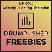 Free The Mind von Destiny