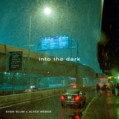 Into The Dark by Evan Blum