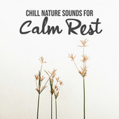 Chill Nature Sounds for Calm Rest (Nature Sounds for Deep Sleep, Soothing Dreaming, Relax the Mind, Inner Balance) by Chillout Master