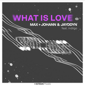 What Is Love by Max + Johann
