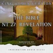 Bible (KJV) NT 27: Revelation by Imagination Audio Books