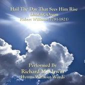 Hail The Day That Sees Him Rise (Llanfair, Organ) de Richard M.S. Irwin
