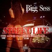 Street Life de Bigg Sess