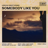 Somebody Like You von Lorjs