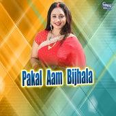 Pakal Aam Bijhala by Nikamal