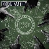 Colonization de Nsg
