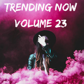 Trending Now Volume 23 de Various Artists