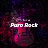 Tardes A Puro Rock de Various Artists