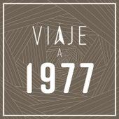 Viaje a 1977 de Various Artists