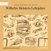 Wilhelm Meisters Lehrjahre (Ungekürzt) de Johann Wolfgang von Goethe
