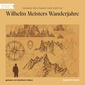 Wilhelm Meisters Wanderjahre (Ungekürzt) de Johann Wolfgang von Goethe