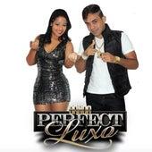 Paredão by Banda Perfect Luxo