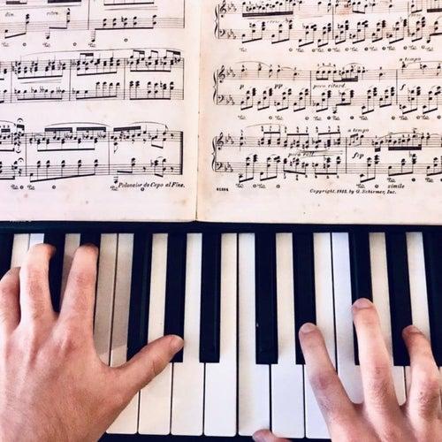 Beethoven: Piano Sonata No.14, Op.27 No.2: 2. Allegretto - Trio de Miguel Angel Patiño