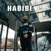 Habibi von Medi67