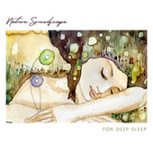 Nature Soundscape for Deep Sleep Relaxation (Calming Breathing in the Night) by Deep Sleep Hypnosis Masters